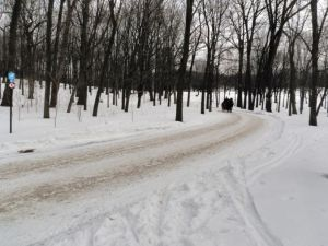 A few acres of snow.